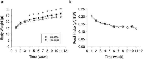 Porównanie wagi grup myszy spożywających glukozę i fruktozę w diecie