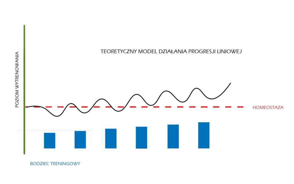 Model teoretyczny progresji liniowej